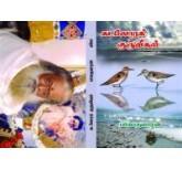 Kadalora Kuruvikal - Balakumaran